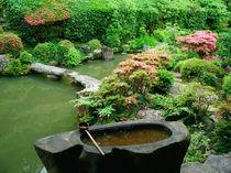 Asia, Japan, Kyoto. Zen Garden by Danita Delimont