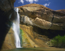 GRAND STAIRCASE-ESCALANTE NATIONAL MONUMENT, UTAH. USA. Lower Calf Creek Falls by Danita Delimont