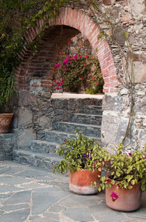 Mexico, San Miguel de Allende, Garden entrance. Credit as by Danita Delimont