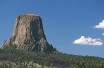 Tourists riding horses in front of Devils Tower National Monument, Wyoming von Danita Delimont
