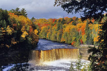 Upper Tahquamenon Falls in UP Michigan in autumn von Danita Delimont