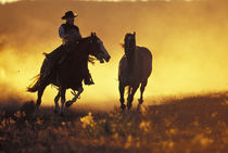 NA, USA, Oregon, Seneca, Ponderosa Ranch Cowboy and horse at sunset  MR PR by Danita Delimont