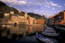 Europe, Italy, Liguria by Danita Delimont