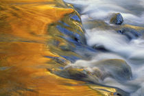 USA, Northeast, Fall color reflections on stream rapids. Credit as by Danita Delimont