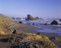 OR, Oregon Coast, Myers Creek, rock formations and shore von Danita Delimont