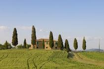 Pienza, Val d'Orcia, Siena province, Tuscany, Italy. von Danita Delimont
