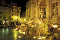 Italy, Rome. Trevi Fountain at night. by Danita Delimont