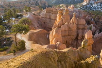 Hiker on Queens Garden Trail in Bryce Canyon National Park in Utah von Danita Delimont