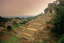 Palenque; Chiapas; Mexico; Maya by Danita Delimont