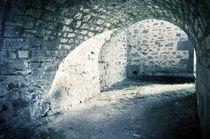Der Burggraben von Thomas Schaefer