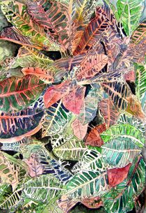 Croton-plant-painting
