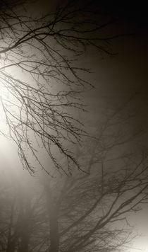 Branchesinfog