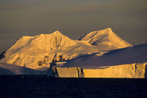 Antarctic Peninsula in Evening Light by Wolfgang Kaehler