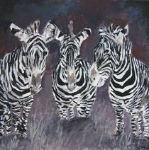 zebra art print by Derek McCrea