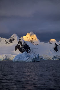 Midnight in Antarctic Peninsula von Wolfgang Kaehler