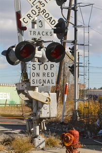 VIntage Detroit Railroad Signal by ushkaphotography
