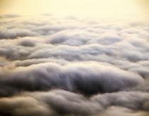Kinpa(Golden wave) by Yukio Otsuki
