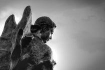 Angel by Tiago Pinheiro