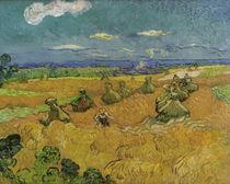 V.v.Gogh, Ernte (Toledo) von AKG  Images