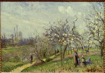 Pissarro/ Bluehender Obstgarten/ 1872 by AKG  Images