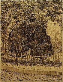 V.van Gogh, Park mit Zaun von AKG  Images