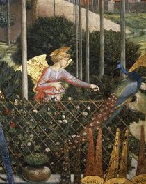 B.Gozzoli, Engel / Pal.Medici-Ricc. 1459 by AKG  Images