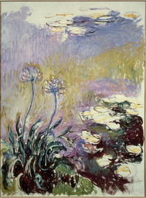 C.Monet, Schmucklilien by AKG  Images
