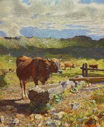 G.Segantini, Braune Kuh an der Traenke by AKG  Images