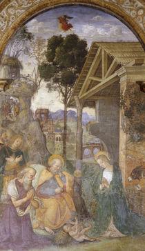 Pinturicchio, Anbetung des Kindes by AKG  Images