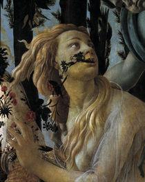 Botticelli, Primavera, Chloris von AKG  Images