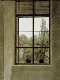 C.D.Friedrich, Fenster mit Parkpartie von AKG  Images