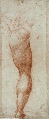 A.Bronzino, Maennliches Bein by AKG  Images
