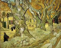 V.van Gogh, Strassenarbeiter Saint Remy von AKG  Images