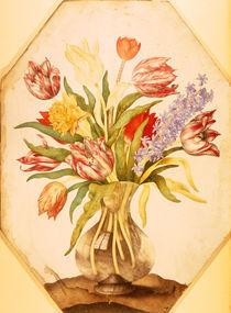 G.Garzoni, Tulpen und Hyazinthe by AKG  Images