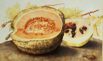 G.Garzoni, Melone und Granatapfel by AKG  Images