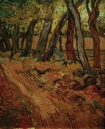 V.van Gogh,Weg im Garten der Heilanstalt by AKG  Images