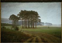 C.D.Friedrich, Der Mittag / um 1822 by AKG  Images