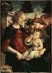 S.Botticelli, Maria mit Kind u.Engeln by AKG  Images