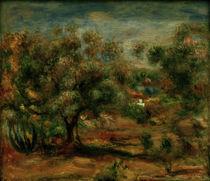 A.Renoir, Landschaft bei Cagnes von AKG  Images