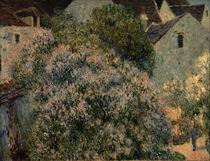 A.Sisley, Der Flieder in meinem Garten by AKG  Images