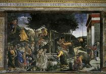 Botticelli, Geschichte des Moses von AKG  Images