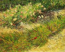 Van Gogh, Schmetterlinge und Blumen by AKG  Images