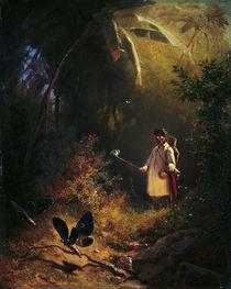 C.Spitzweg, Der Schmetterlingsfaenger by AKG  Images