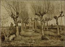V.van Gogh, Kopfweiden von AKG  Images
