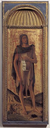 Giov.Bellini, Johannes der Taeufer by AKG  Images