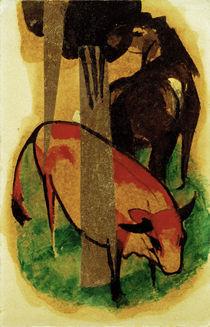 Franz Marc,Schwarzbr.Pferd u.gelbes Rind von AKG  Images