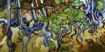 V.v.Gogh, Baumwurzeln und Baumstaemme von AKG  Images