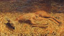 Giovanni Segantini, Totes Reh von AKG  Images