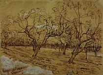 V.van Gogh, Provenzalischer Obstgarten von AKG  Images
