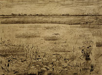V.van Gogh, Sumpflandschaft von AKG  Images